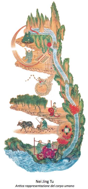 Nei Jing Tu, antica rappresentazione del corpo umano